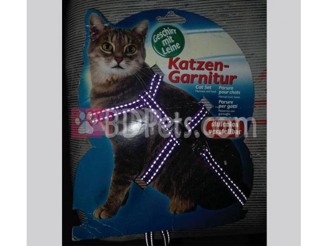 Cat body belt