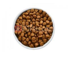 Hills Metabolic Canine Prescription Diet
