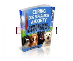 Curing Dog Separation eBook